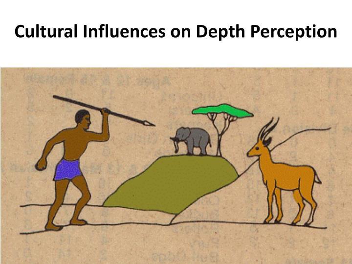 Cultural Influences on Depth Perception