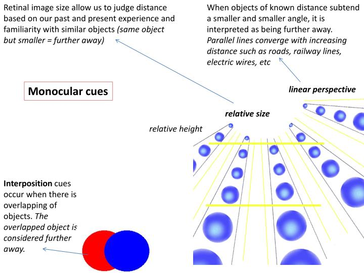 Retinal image size allow us to judge distance based on our past and present experience and familiarity with similar objects