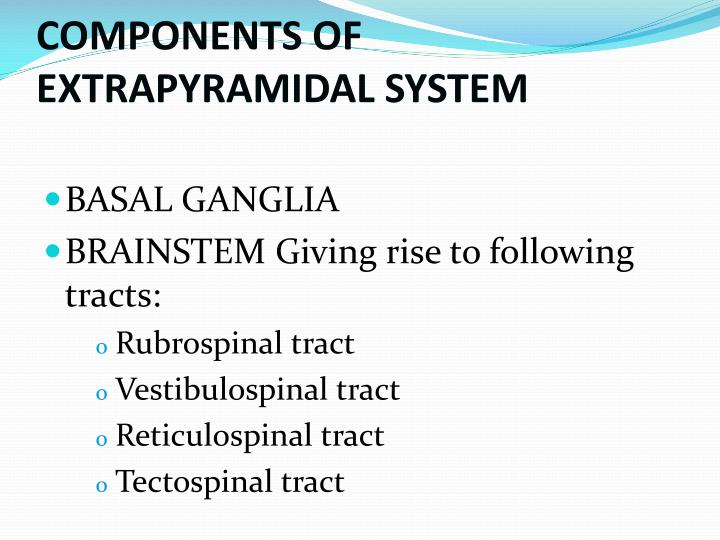 COMPONENTS OF EXTRAPYRAMIDAL SYSTEM
