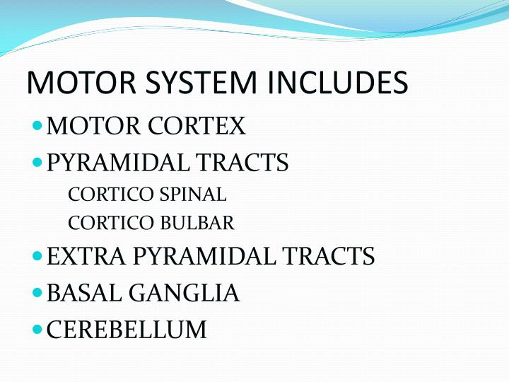 Motor system includes
