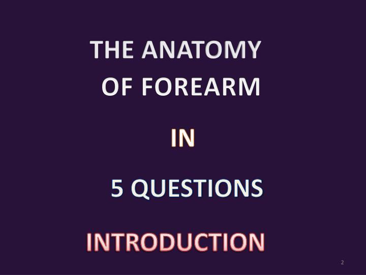 PPT - ANTERIOR ASPECT OF THE FOREARM & CUBITAL FOSSA PowerPoint ...