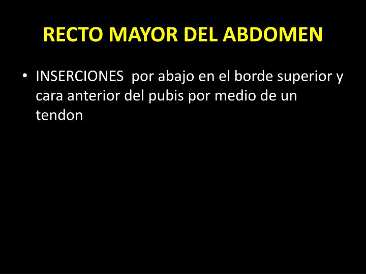 RECTO MAYOR DEL ABDOMEN