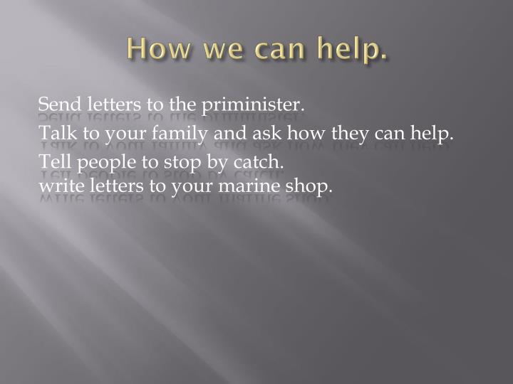 How we can help.