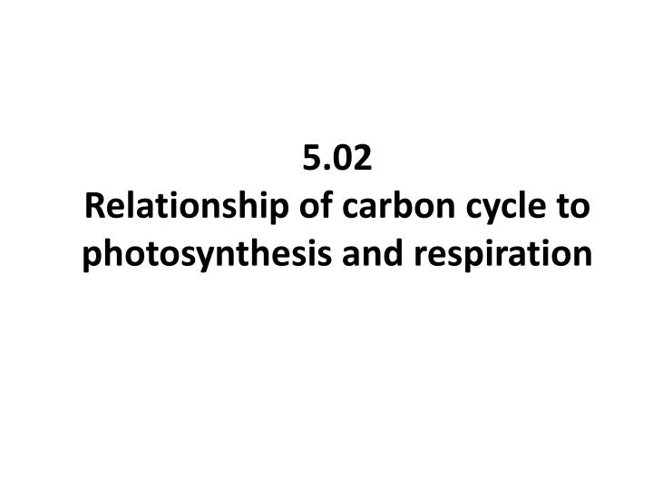 5 02 relationship of carbon cycle to photosynthesis and respiration
