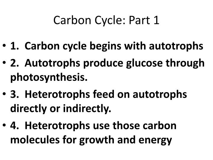Carbon Cycle: Part 1