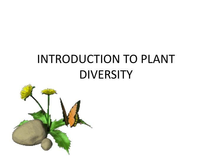 introduction to plant diversity n.