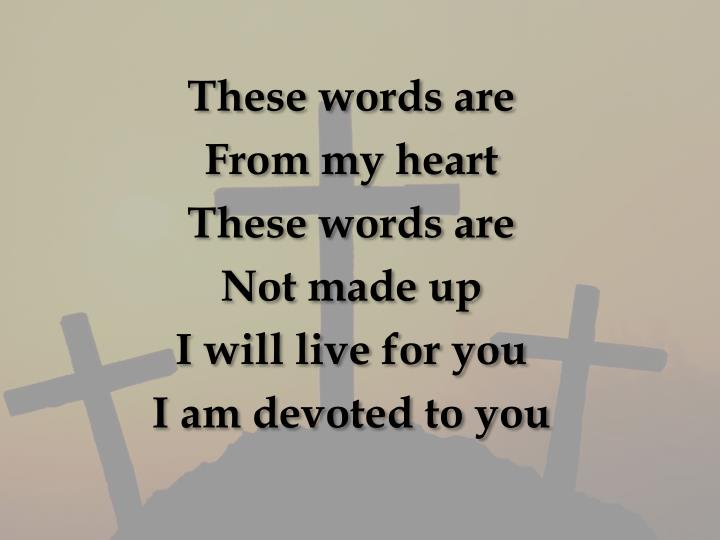 These words are
