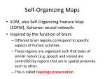 self organizing maps
