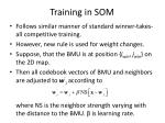 training in som
