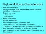 phylum mollusca characteristics
