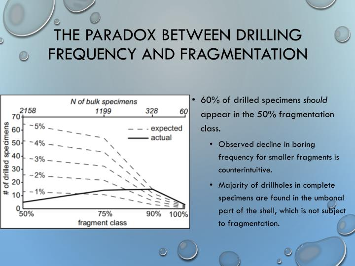 The Paradox between Drilling Frequency and Fragmentation