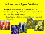 inflorescence types continued