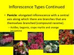 inflorescence types continued1