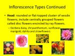 inflorescence types continued6