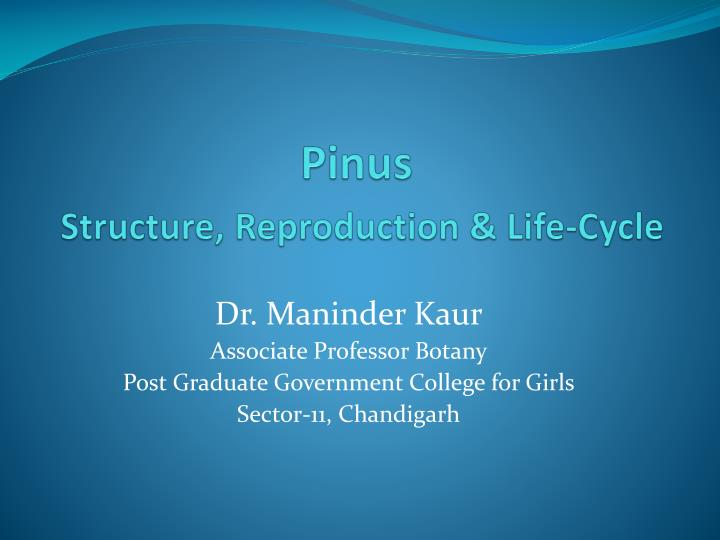 pinus structure reproduction life cycle n.