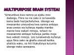 multipurpose brain system