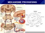 mekanisme prossesing