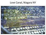love canal niagara ny