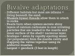 bivalve adaptations