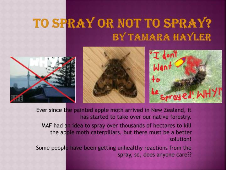 to spray or not to spray by tamara hayler n.