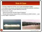 role iii care