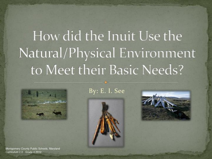 how did the inuit use the natural physical environment to meet their basic needs n.