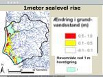 1meter sealevel rise