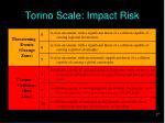 torino scale impact risk