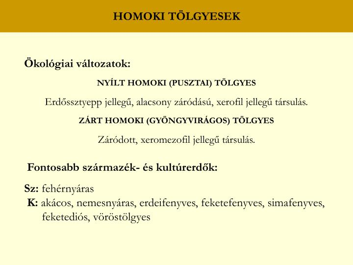 HOMOKI TÖLGYESEK