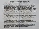 brief story summary