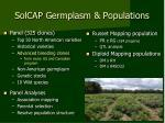 solcap germplasm populations