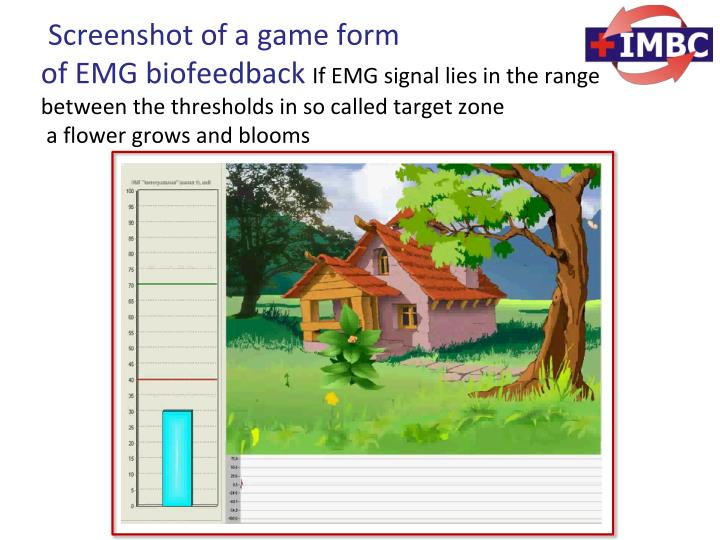 Screenshot of a game form