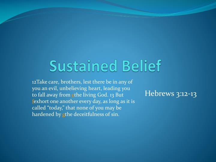 sustained belief n.