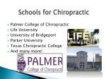 schools for chiropractic