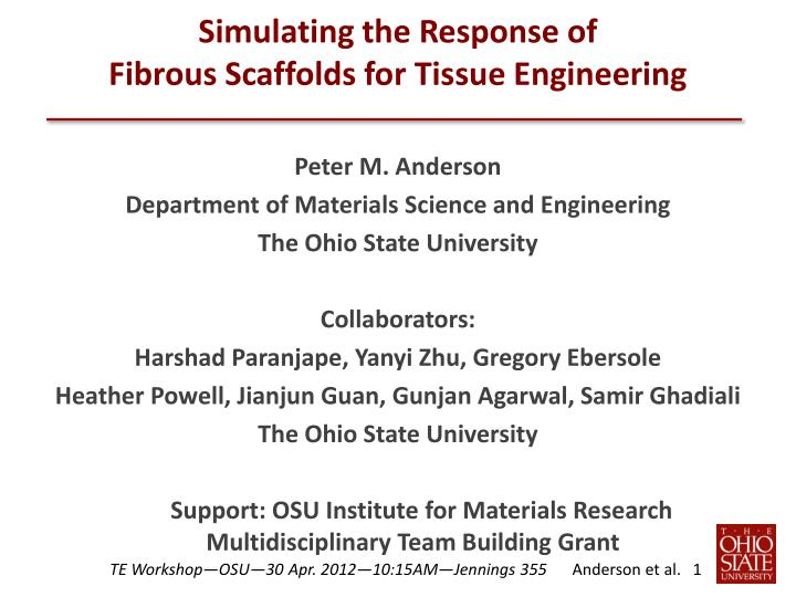 simulating the response of fibrous scaffolds for tissue engineering n.
