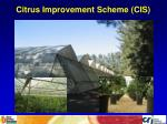 citrus improvement scheme cis
