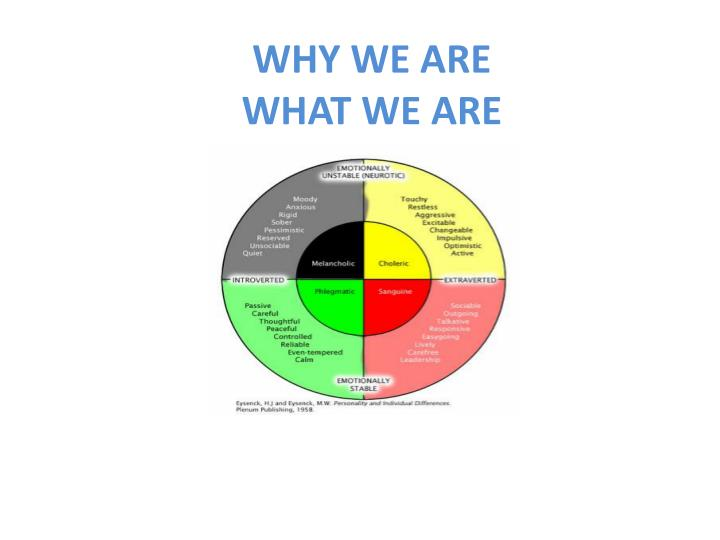 why we are what we are n.