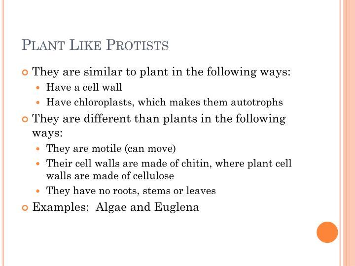 Plant Like