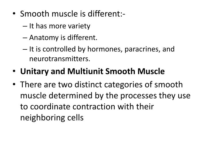 Smooth muscle