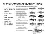 classification of living things18