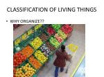 classification of living things4