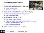 cavity experimental plan