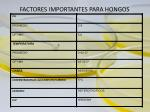 factores importantes para hongos
