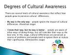 degrees of cultural awareness