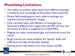 mosaicking limitations