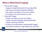 what is wide field imaging