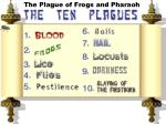 the plague of frogs and pharaoh