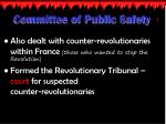 committee of public safety1