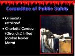 committee of public safety3
