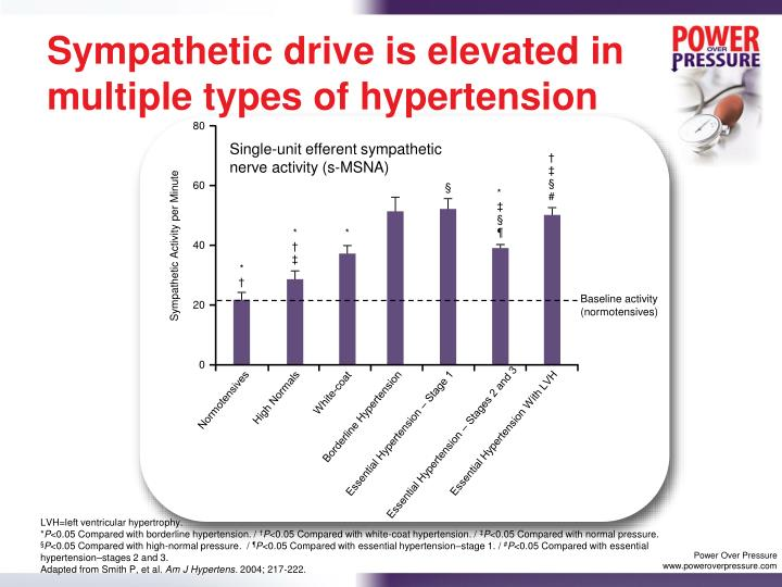 Sympathetic drive is elevated in multiple types of hypertension